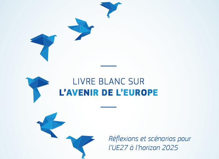 livre_blanc_avenir_UE